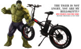 Fantas BMX 36V250W 20inches Mountain Electric Motorcycle
