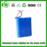 Rechargeable Battery for DVD of 11.1V1500mAh30A Lithium Ion Battery
