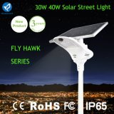 30W High Lumen Solar LED Street Lamp with Lithium Battery
