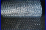 Galvanized /PVC Coated /Stainless Steel Hexagonal Wire Netting