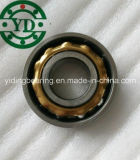 Low Price Full Complement Bearing NSK Bl316 Bl317 Bl318 Bl319