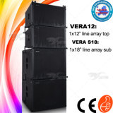 Upgraded New Grille Skytone Vera 12inch Top Plus 18inch Sub Line Array PRO Audio DJ System