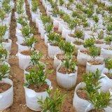 Flower Grow Bag Pot/Planter, Good Price
