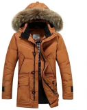 Women's Casual Cotton-Padded Clothes for Winter Sy-37