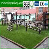 Cheap Leisure Artificial Grass for Balcony and Garden Use