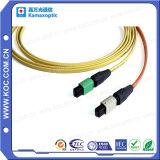 MPO 12fibers Siglemode or Multimode Fiber Optical Patchcord