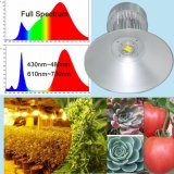 High Power Energry Saving LED Grow Light Lamp Full Spectrum for Plant