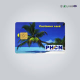 Plastic Transparent Business VIP Card with Hot Stamping