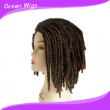 Braided Curly Hair Synthetic Hair Wig