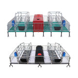 Pig Equipment for Poultry Farm of Sows