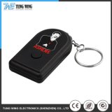 Small Recordable Sound Keychain with Button