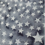 Star Cotton Printed Denim Fabric for Shirt
