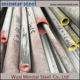 Tp316L Seamless Stainless Steel Pipe with Competitive Price