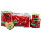 Canned Tomato Paste-Taima Brand for Nigeria