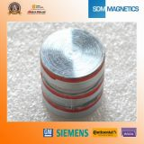 Custom Shape Cheap Neodymium Magnetic Cylinder Magnet