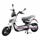 2017 Latest 1000W 60V LED Adult Electric Bike (Flash Racer-X man)