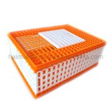 Cheapest Price Chicken Transport Cage Plastic Poultry Transport Layer Cage