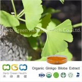 Natural Plant Extract Organic Ginkgo Biloba Extract for Lower Blood Pressure Herb Herbal