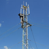 100m Telecommunication Guy Wire Antenna GSM Tower