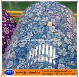 Color Coated Galvanized Steel Coil with Flower Grain