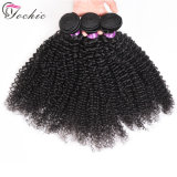 Unprocessed Afro Kinky Curly Wholesale Brazilian Virgin Hair Weave with Double Weft 100 Remy Human Hair Weave