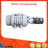 Sunny Factory Zjy-300A Roots Pump for Sale/ Roots Vacuum Pump Price