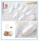 Pigment Powder Shell Nail Art Glitter Chrome Powder Decorations