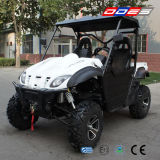 800cc Side by Side UTV 4X4 for Sale