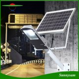 20W /30W/50W Solar LED Street Light with Separate Panel