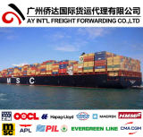 Container Shipping From China to Europe Price by Sea