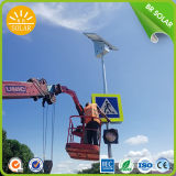 30W with 6mtrs Solar Powered Street Lights, Lighting Effect Equal to 150W High Pressure Sodium Lamp