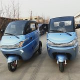 EEC Electric Cheap Electric Car 3 Wheel Quad Vehicle