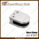 D-Shape Stainless Steel Glass Clamp for Handrail Fitting (SJ-F307)
