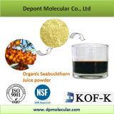 Organic Sea Buckthron Juice Powder, Hippophae Rhamnoides