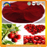 Cranberry Juice Extract Powder for Health Care