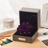 Promotional Constellation Preserved Flowers Gift