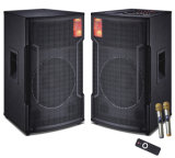 Professional Active Speaker with Big Power (BYW011)