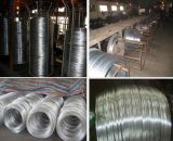 Factroy Price! ! ! 2.0 mm Galvanized Steel/Iron Wire Manufacturer