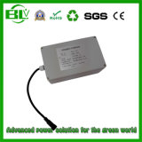 Shenzhen Wholesales Waterproof Fuse Solar Street Light 12V LiFePO4 Li-ion Battery