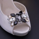 Fashion Shoe Ornament for Ladies Shoes