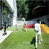 Four Color Competitive Price Anti UV Artificial Grass Turf for Pet