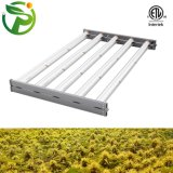 Aluminum 1000W 301d Tube LED Grow Light for Greenhouse Indoor Plants Growth Seedling Household Potted Plants with CE RoHS
