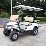 Marshell New Design 2 Seater Electric Lifted Car (DH-C2-8)