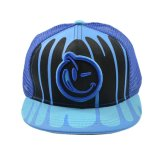 Fashion Printing Mesh Cap with 3D Embroidery (HY17041111)