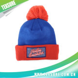Customized Acrylic Cuffed Winter Knitted Hat with Ball Top (089)
