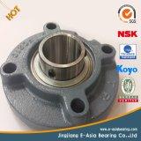 SKF Bearing NSK Bearing NTN Bearing Timken Bearing Koyo Bearing Pillow Block Bearing