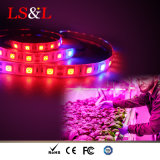 DC12V IP54 Waterproof LED Strip Plant Grow Light for DIY Greenhoues