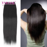 Wholesale Human Hair Extension Skin Weft