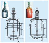 China New Design Chemical Reactor