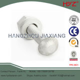 High Strength Tc Bolts with Round Head